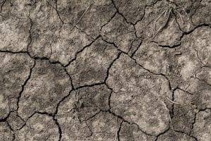 Sol brûlé par la sécheresse
